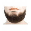5-point Beard - Blend